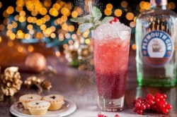 plymouth-gin-xmas cracker2