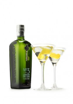 Martini_w_bottle_HR1