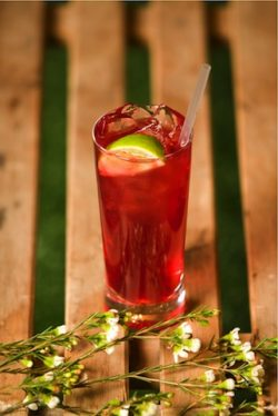 Beefeater Summer and Cranberry