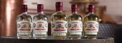 Oak-Aged-Gin